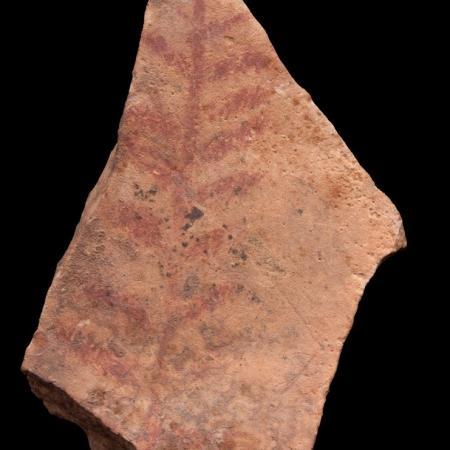 Plaquette en pierre peinte avec motifs de branches