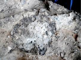 Hogar en el yacimiento del Paleolítico Medio de la Cova del Salt (Alcoi). Fotografía: Begoña Soler